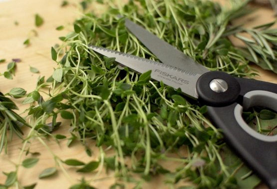 Cutting Academy kitchen scissors and shears