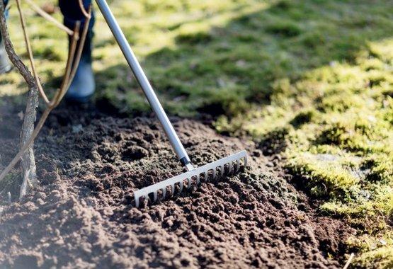 Prepare planting beds